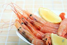 Free Seafood Royalty Free Stock Photo - 2802005