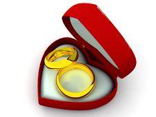 Free Wedding Rings Royalty Free Stock Image - 2804436