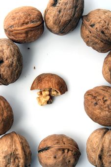 Nut Ingredient Stock Photo