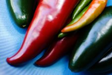 Variety Of Hot Peppers Royalty Free Stock Image