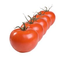 Free A Line Of Tomatoes Stock Images - 2809804
