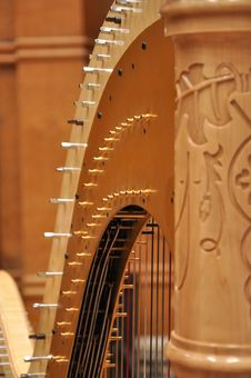 Upper Part Of Harp Stock Images