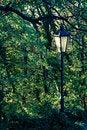 Free Autumn Lamp Post Royalty Free Stock Photo - 28018525