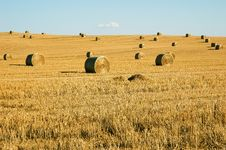 Free Straw Field Royalty Free Stock Photography - 28017467