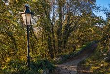 Free Autumn Lamp Post Royalty Free Stock Photo - 28018635