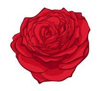 Free Stylish Red Rose Stock Images - 28027764