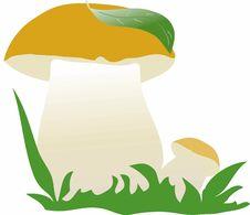 Free Vector Mushroom Royalty Free Stock Image - 28029116