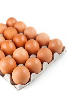 Free Eggs Royalty Free Stock Image - 28035986