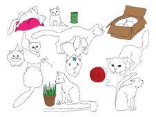 Free Cat Stock Photos - 28040923