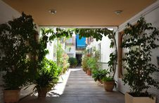 Free Andalusian Patio Of Cordoba Royalty Free Stock Photo - 28041945