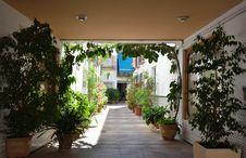 Andalusian Patio Of Cordoba Royalty Free Stock Photo