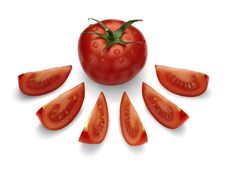 Ripe, Red Tomato. Stock Image