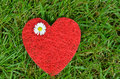 Free HEART ON THE GRASS Royalty Free Stock Photos - 28059418
