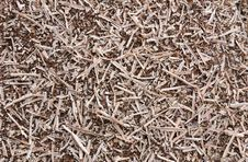 Wooden Sawdust Stock Image
