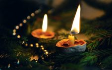 Two Candles With Coniferous Sprigs Royalty Free Stock Photo