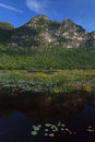 Free Beautiful Mountain And Lake With Lotus Stock Photos - 28070403