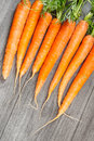 Free Biological Carrots Royalty Free Stock Photos - 28073678