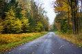 Free Autumn Road Royalty Free Stock Photo - 28083785