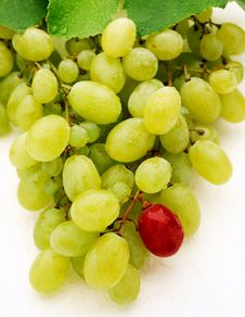 Free Green Table Grapes Royalty Free Stock Image - 28080576