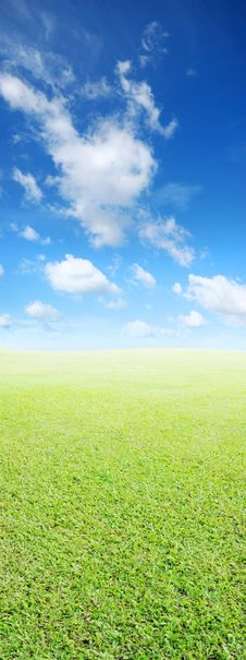 Free Grass And Sky Background Royalty Free Stock Photography - 28083967