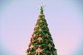 Free Christmas Tree Royalty Free Stock Photo - 28097755