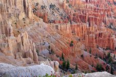 Free Great Spires Carved Away By Erosion In Bryce Royalty Free Stock Images - 28095609