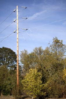 Free Power Lines, Trees, And Blue Sky Stock Photos - 28097453