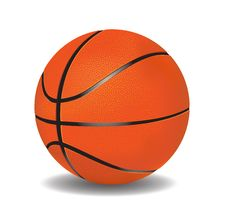 Free Vector Basketball  Leather Stock Image - 28097981