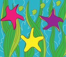 Free Sea Stars Royalty Free Stock Photo - 28098855