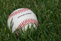 Free Official Baseball On The Grass Stock Photography - 2811382