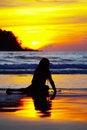 Free Mermaid Royalty Free Stock Images - 2813979