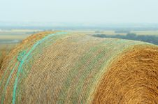 Free Round Bale With Netting Stock Images - 2813464