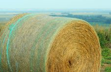 Free Round Bale With Netting Royalty Free Stock Images - 2813469