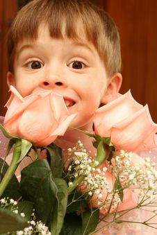The Nice Boy And Pink Roses Royalty Free Stock Photography