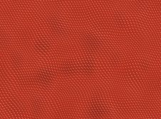 Red Reptile Skin Stock Images