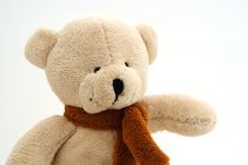 Free Teddy Bear Pointing Stock Photography - 2816622