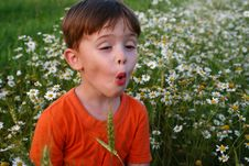 Free Emotions Of The Child Stock Photography - 2818402