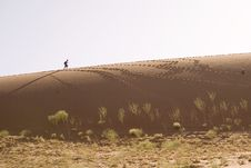 Free Sand Dunes Royalty Free Stock Photography - 2819317