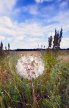 Free Wild Country Stock Photos - 2819333