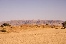 Free Sand Dunes Stock Photos - 2819363