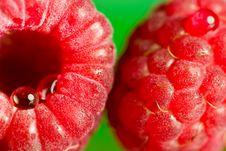 Free Raspberry Stock Photos - 2819383