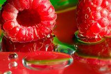 Free Raspberry Stock Photography - 2819392