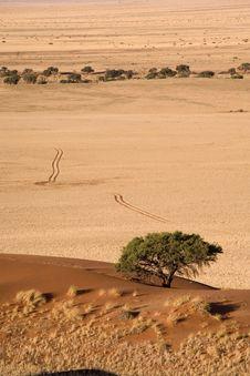 Free Sand Dunes Stock Photo - 2819400