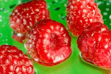 Free Raspberry Royalty Free Stock Image - 2819436