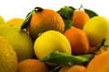 Free Citrus Fruits Stock Image - 28109261