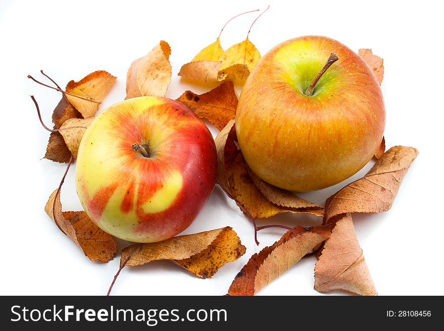 Autumn apples and yellow leaves