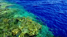 Free Red Sea Royalty Free Stock Photo - 28111505