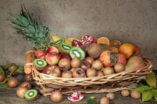 Autumn Fruits Stock Image