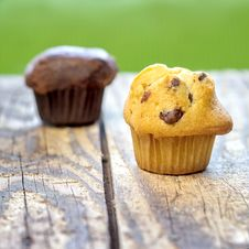 Free Chocolate Chip Muffins Royalty Free Stock Photo - 28122025