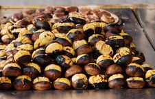 Free Grilled Chestnuts Stock Images - 28129554